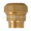 Brass pipe fitting Male